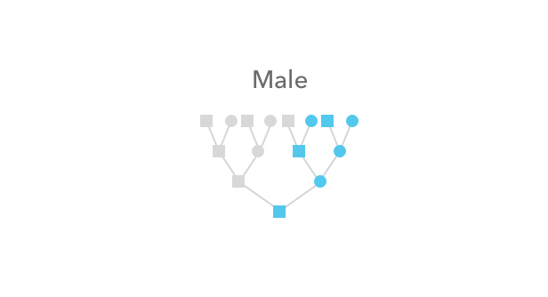 Who_passed_along_your_X_chromosome_DNA_-_male_only.png
